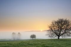 Überm Nebel-1