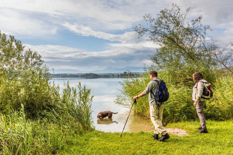 Wandern am Waginger See